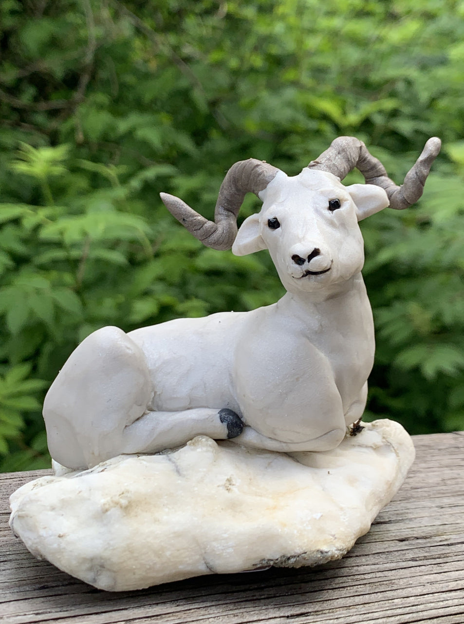 Doll Sheep Ram