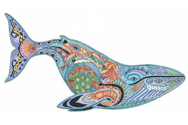Blue Whale by Sue Coccia
