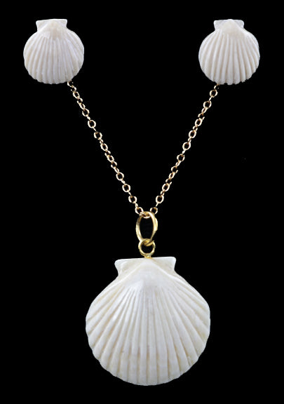 Clam Shell Set