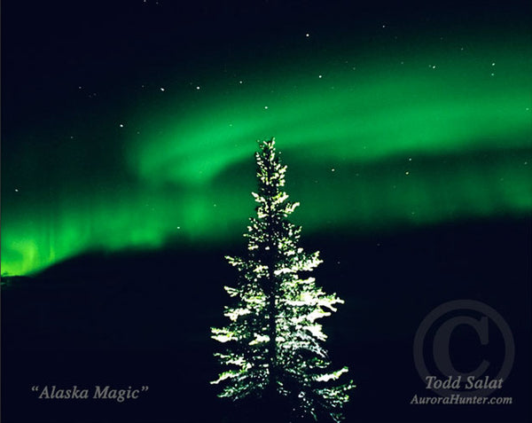 Alaska Magic by Todd Salat