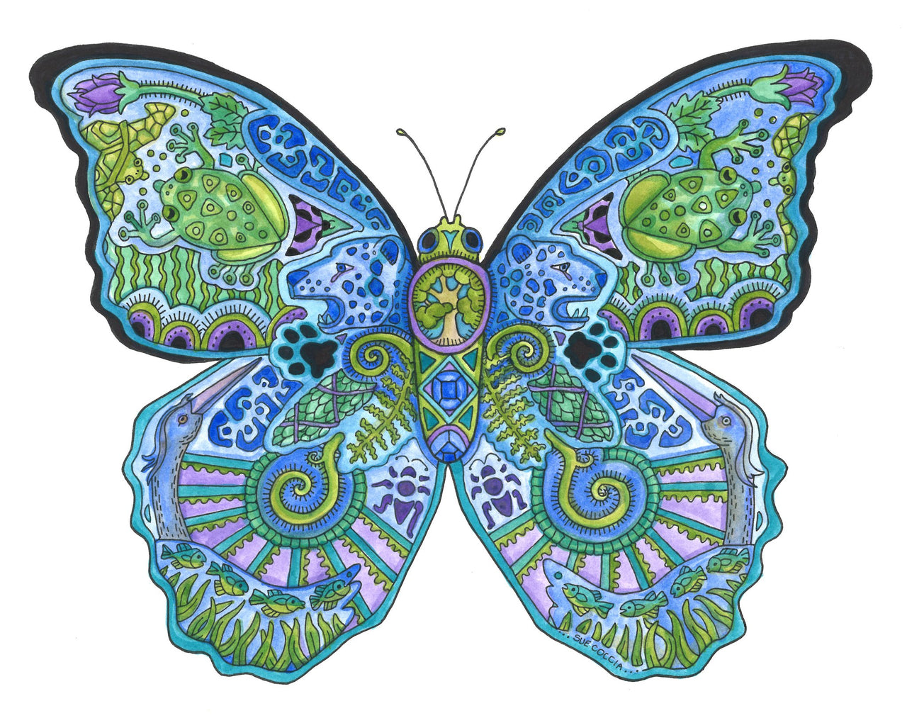 Blue Morpho Butterfly by Sue Coccia