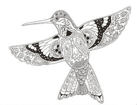 Hummingbird Stamp by Sue Coccia