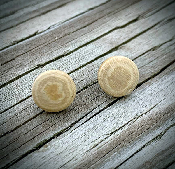 Mammoth Ivory Post Earrings