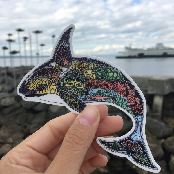 Orca Sticker by Sue Coccia