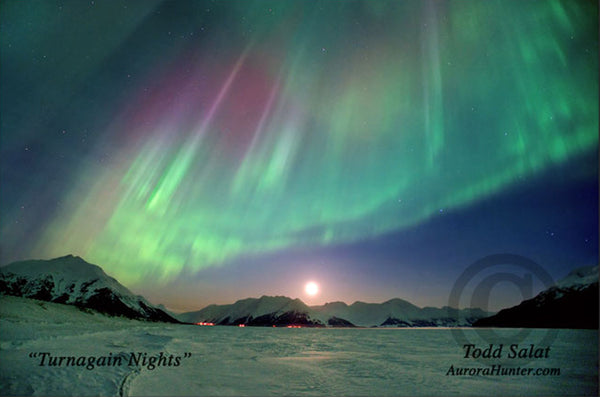 Turnagain Nights by Todd Salat