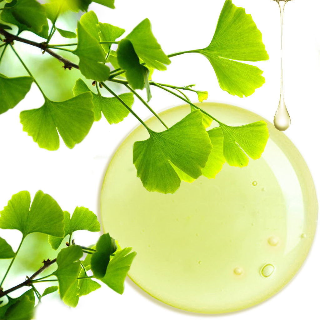 ginko biloba ingredient in bathmate control delay gel