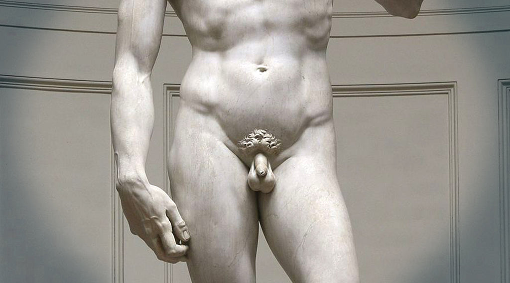 Midsection of Michelangelo's David statue