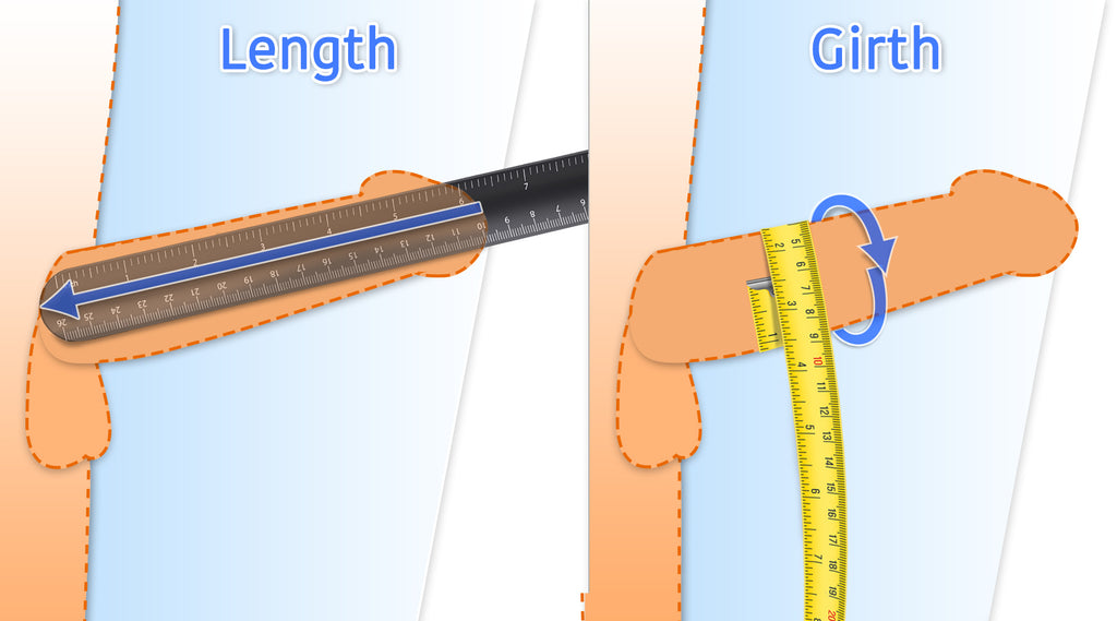 how to measure your erect penis