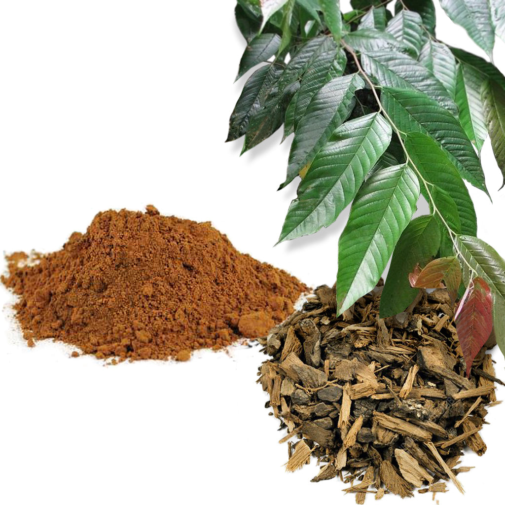The ingredients of pygeum bark powder