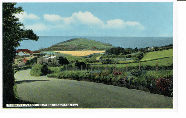 Bigbury on Sea Burgh Island From Folly Hill 1960's Dennis
