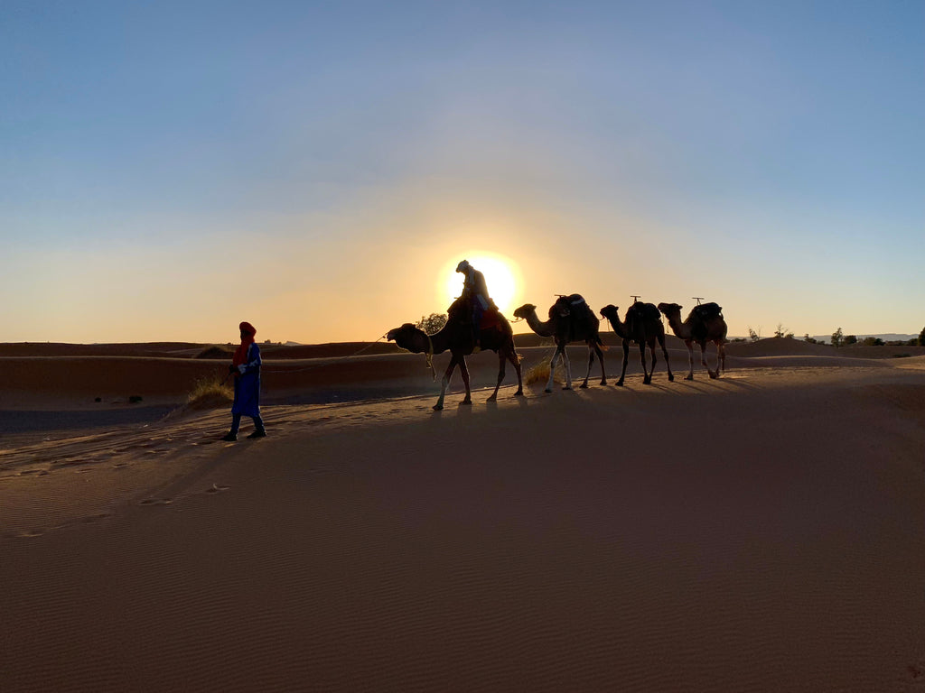 Camel Journey through the Sahara | Photo Blog