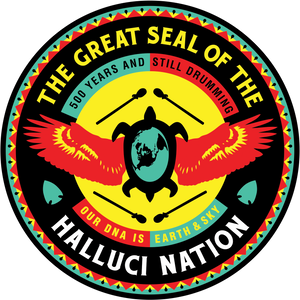 The Halluci Nation