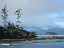 Load image into Gallery viewer, Rennel Sound Ocean Mist Haida Gwaii