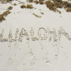 Lualoha at the beach