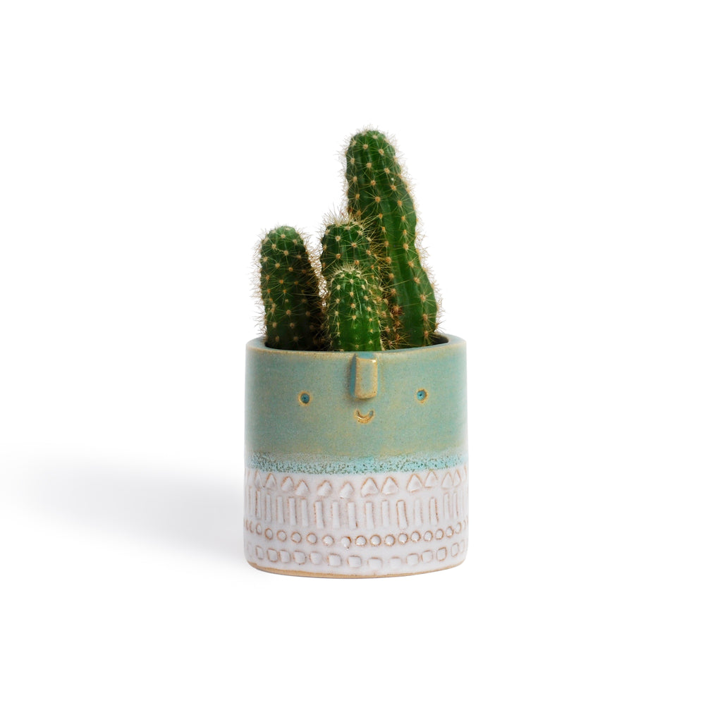 Atelier Stella Mini Pot Turquoise and White - RUME