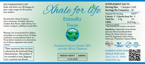 Xhale For Life EntouRx 500MG Focus Fresh Mint
