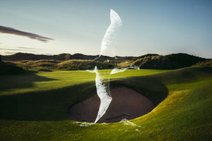 Drawing of an albatross overlaid on a links golf course