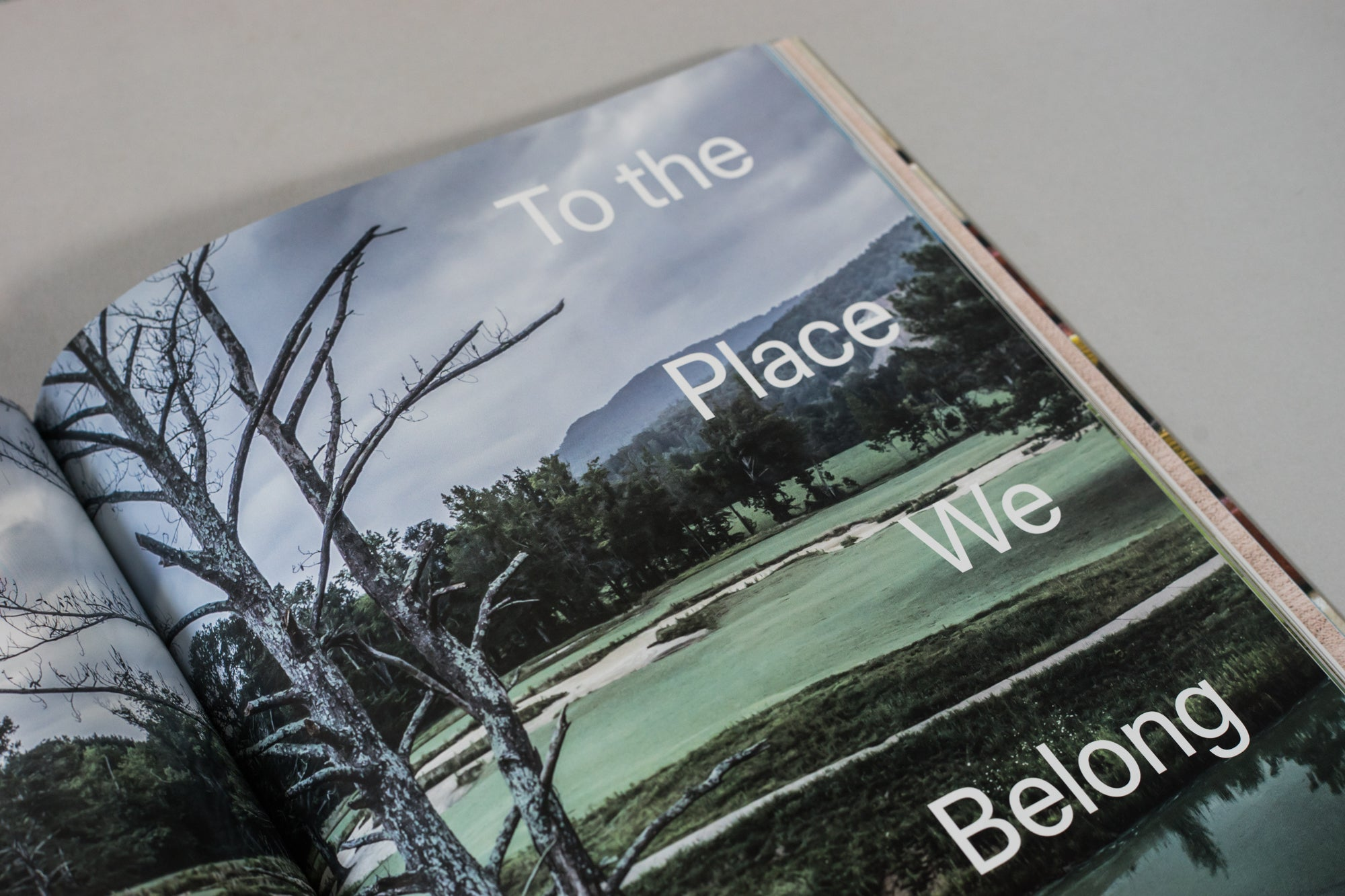 "Cover image for the article ""To the Place We Belong"" from The Golfer's Journal Issue 2"