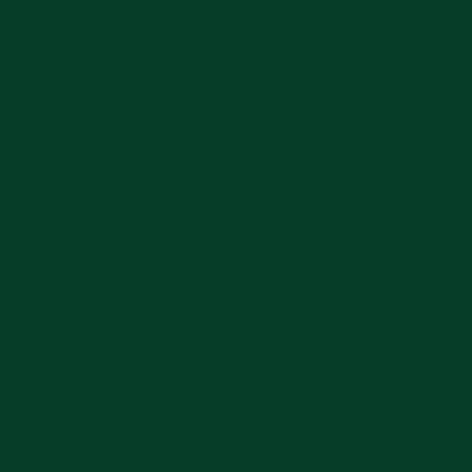 Dark Green - Oracal 651