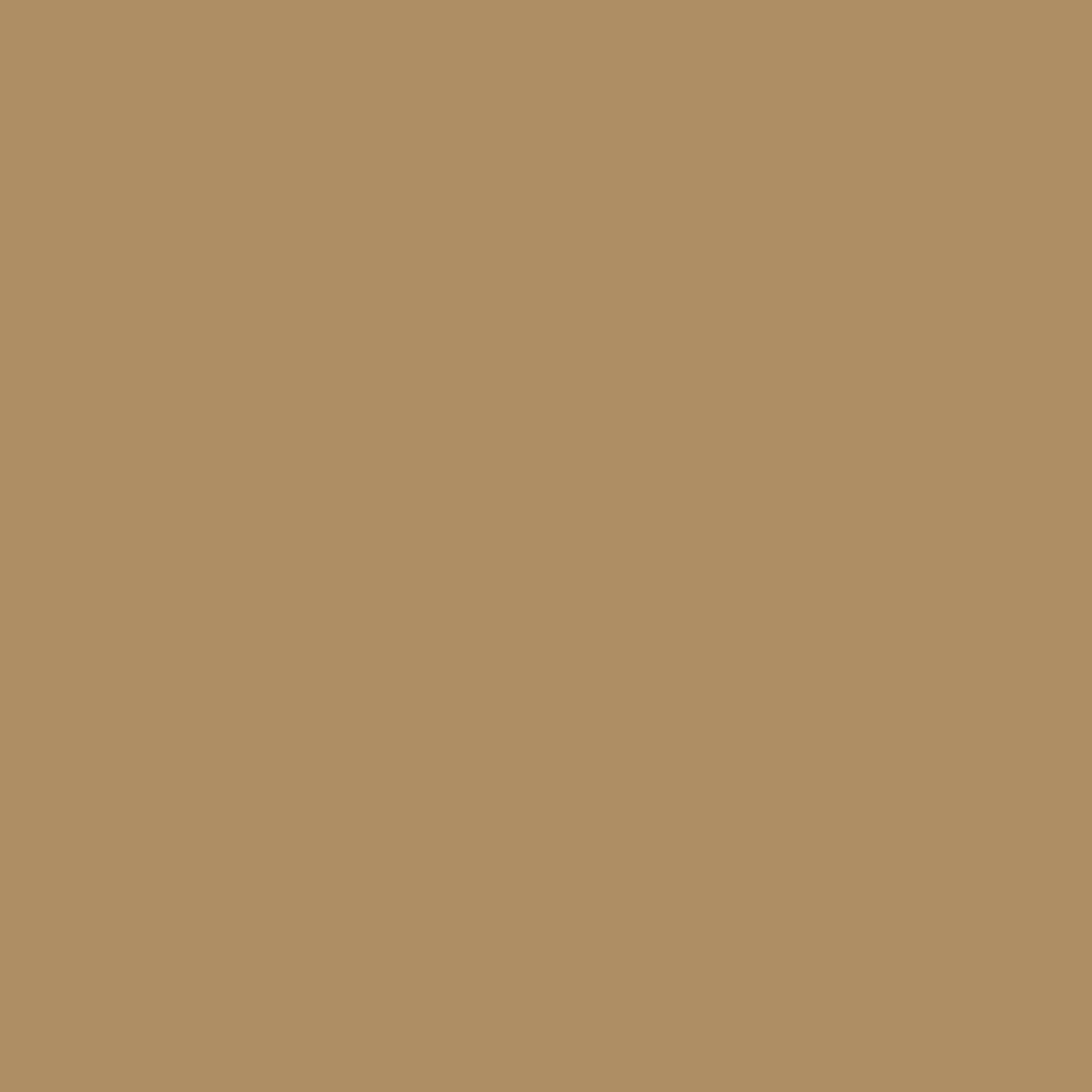 Light Brown - Oracal 631