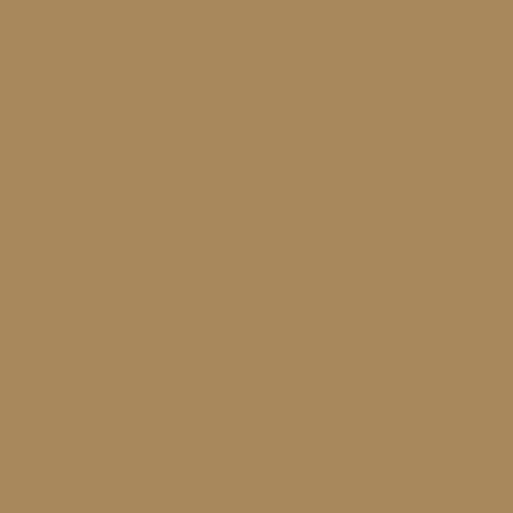 Light Brown - Oracal 651