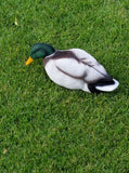 Drake Mallard Full Body Decoy Flocking Kit