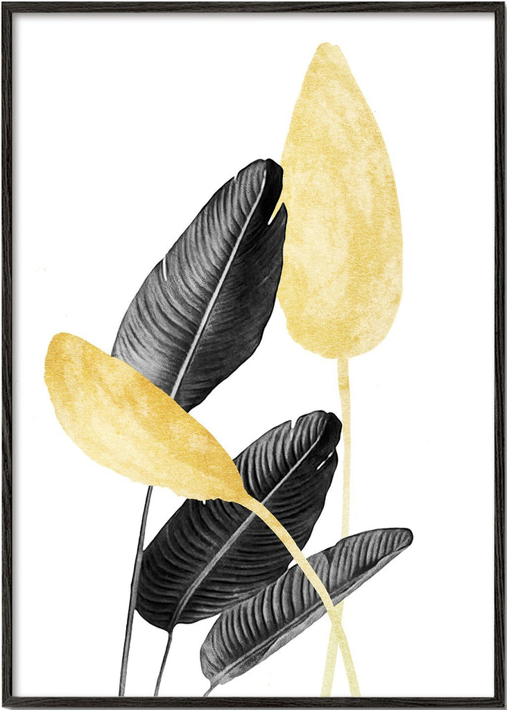 Bird of Paradise Plant Black, White and Gold 02
