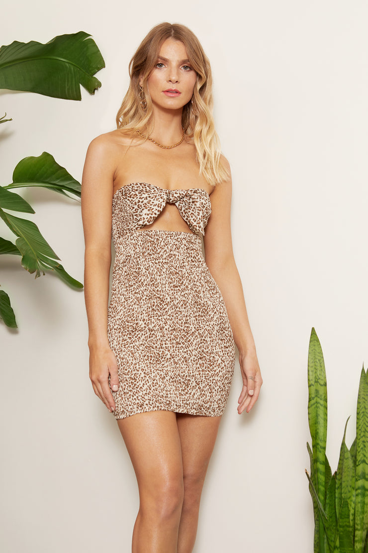 Zahara Leopard Smocked Tube Dress