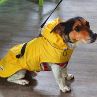 Mac in Pac Dog Coat - The Norfolk Groomshed
