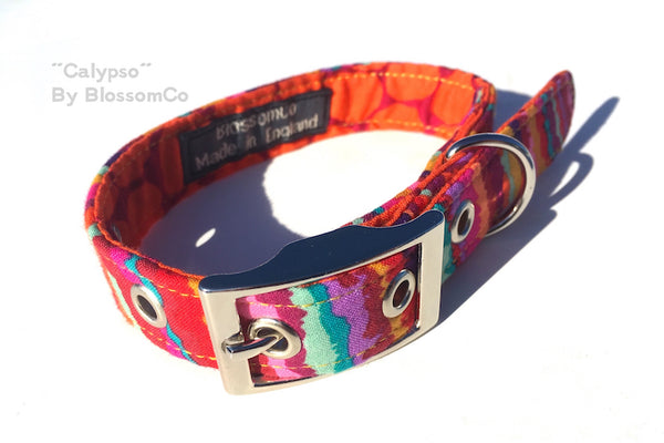BlossomCo Calypso Dog Collar - The Norfolk Groomshed