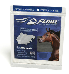 Flair plasters 6-pack