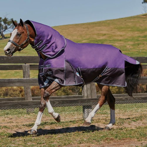 Comfitec Premier 220G turnout rug 1200D 5ft 3in