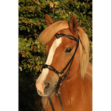Load image into Gallery viewer, Plain decorative Headstall