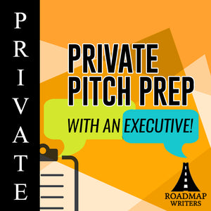 Private 30-Minute Pitch Preps!