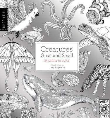 Field Guide: Creatures Great and Small - Marissa's Books