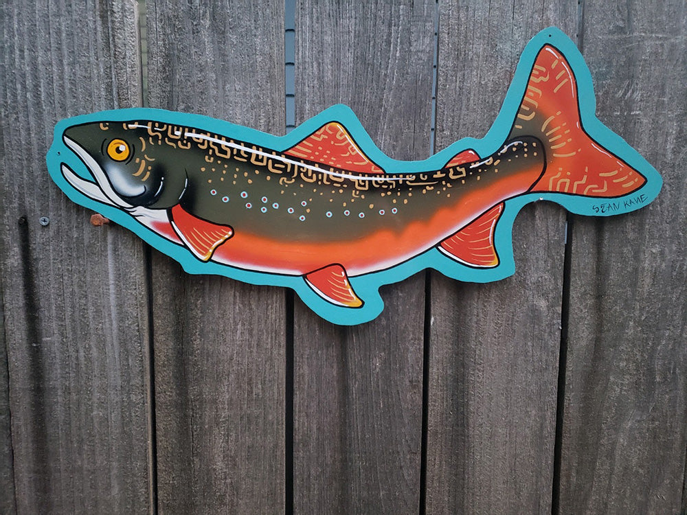 Rippin' Ass Brook Trout by Sean Kane