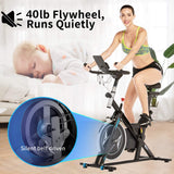 ANCHEER Spin Bike for Home Stationary Exercise Bike for Cardio Workout