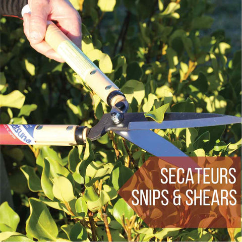 Secateurs and pruning shears