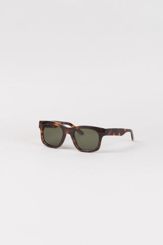 Type 01 - Brown Tortoise