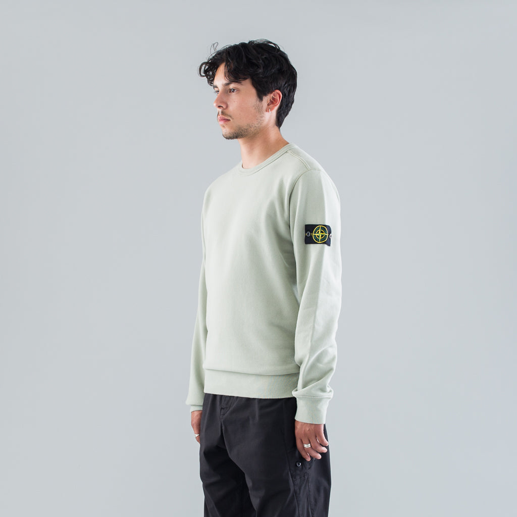 GARMENT DYED CREW SWEAT - DUST