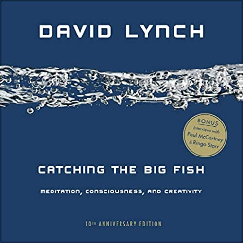Catching the Big Fish: Meditation, Consciousness, and Creativity: 10th Anniversary Edition (Paperback)