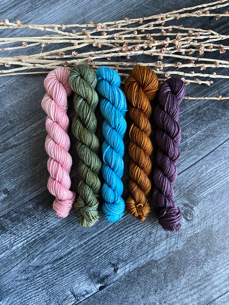 SW Merino Nylon Mini Skein Set
