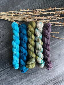 SW Merino/Nylon Mini Skein Set