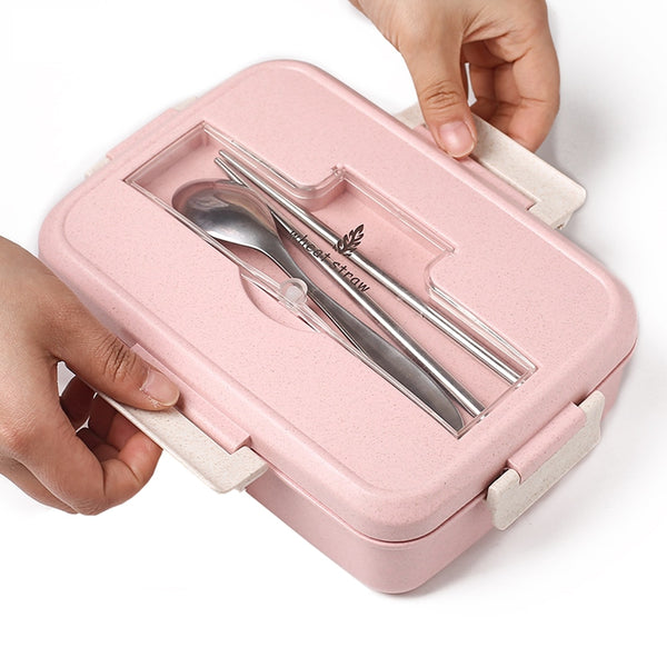 School Lunch Box for Older Kids