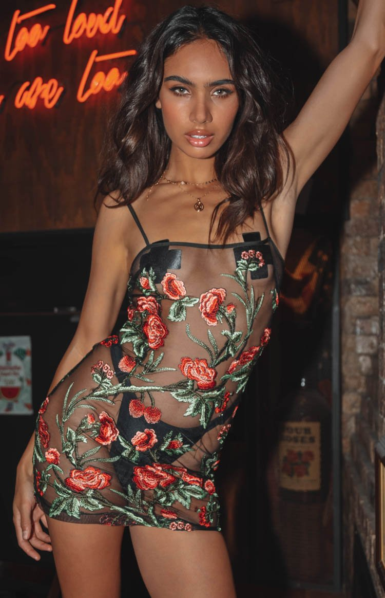 https://files.beginningboutique.com.au/Stone+Roses+Mini+Dress+Rose+Mesh.mp4