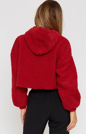 Tiny Teddy Crop Jumper Red