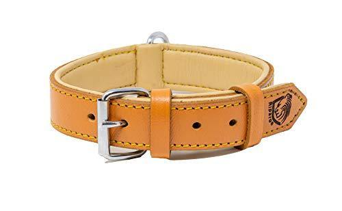 "Riparo Genuine Leather Padded Dog Heavy Duty K-9 Adjustable Collar (M: 1"" Wide for 14.5"" - 17.5"" Neck, Camel) - K9Boxer"