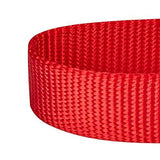 "Blueberry Pet Essentials 21 Colors Classic Dog Collar, Rouge Red, Medium, Neck 14.5""-20"", Nylon Collars for Dogs - K9Boxer"