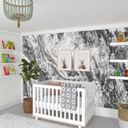 Black and White Marble Mural