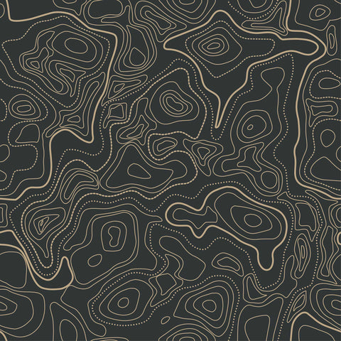 Black and Gold Abstract